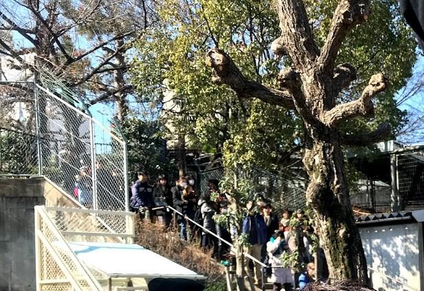 天王寺公園イベント