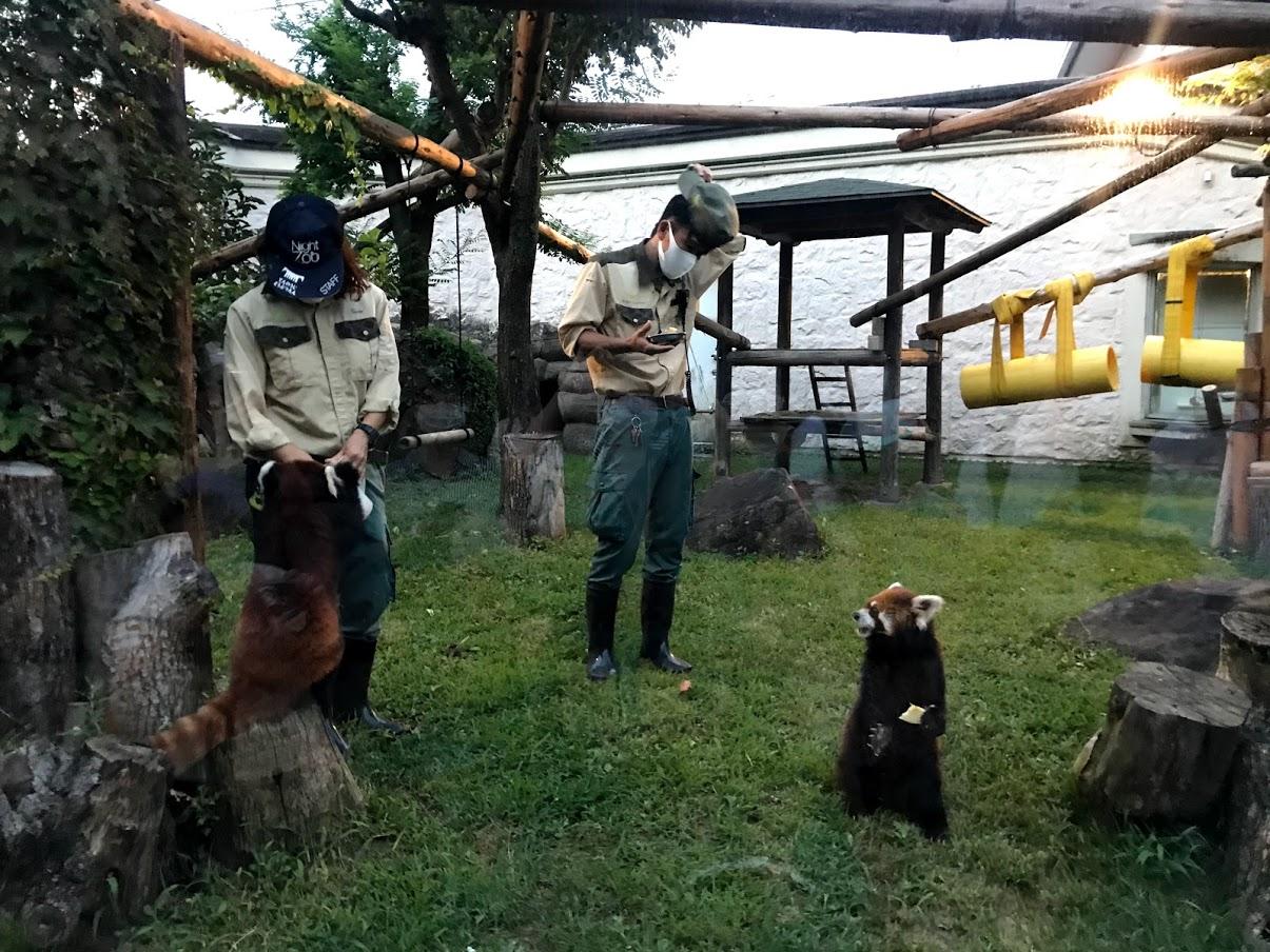 予約 天王寺 動物園